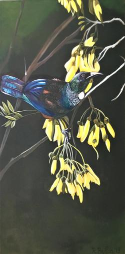 Rob Barton - Tui On Kowhai Acrylic On Canvas