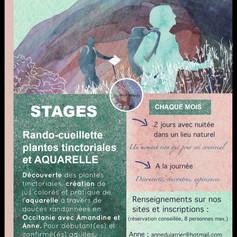 Flyer Ô anne et B'art nomade