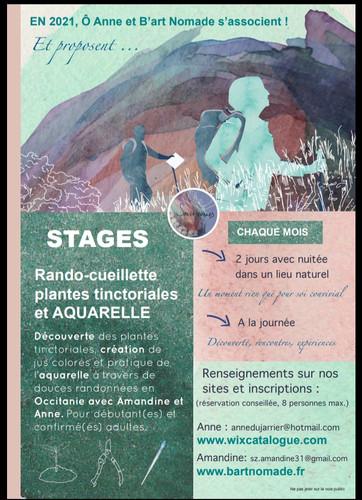 Flyer pour STAGES Rando, cueillette plantes tinctoriales et AQUARELLE