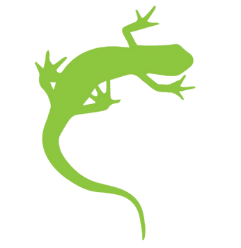 PNG Gecko only transparent bkgrnd.png