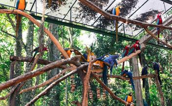 Zoo.jpg 2015-8-15-13:15:35