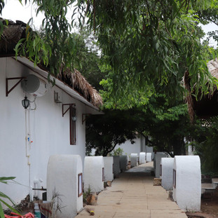 Basho Bougainvillea, Karjat