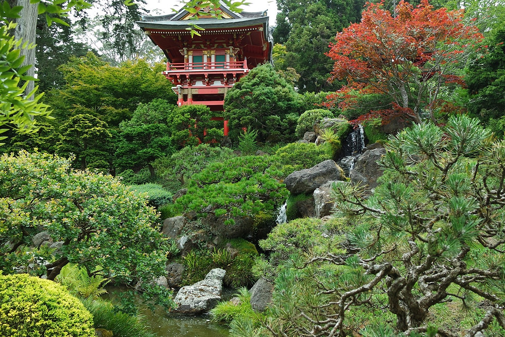 A tall red pagoda surrounded by greenery sits on top of a hill in the center and a waterfall runs down from the right to center into a pond at the San Francisco Japanese Tea Gardens.