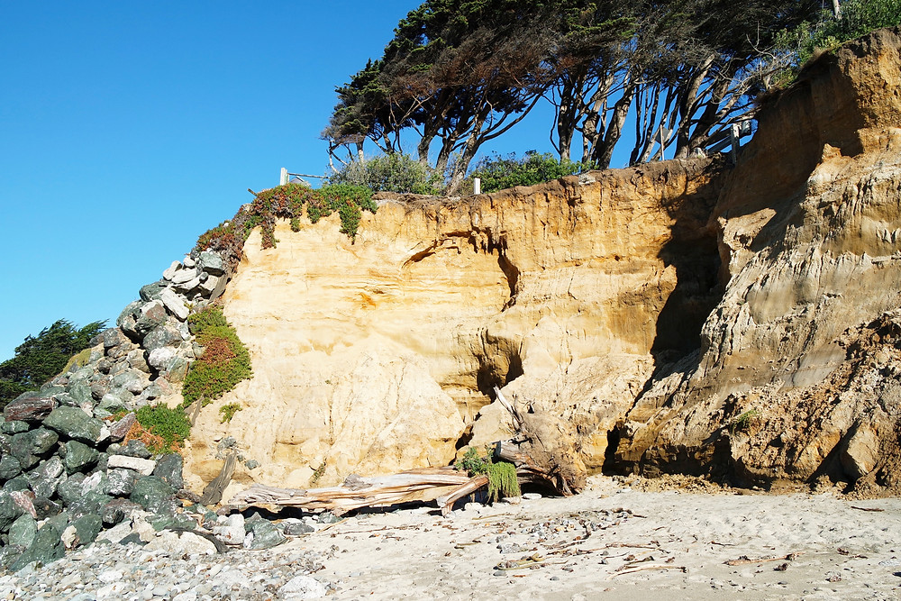 A sand colored cliff face with trees on top and a pile of rocks at one end and the beach below at Fitzgerald Marine Reserve.