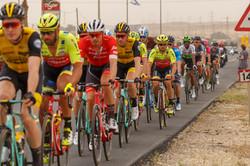 Road Biking to Eilat