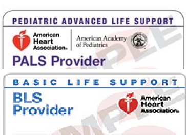 (PALS) and (BLS) Combo Course $170.00