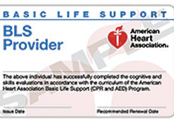 Basic Life Support (BLS) Provider Course Completion Card