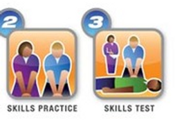 Parts 2 and 3 of the ACLS ONLINE Course $75.00