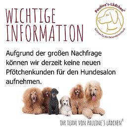 Paulines-Lädchen_Social-Media-Beiträge.jpg