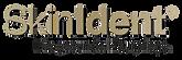 Logo_SkinIdent.png
