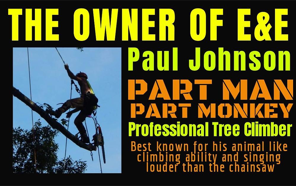 Tree Removal Williamsburg | Tree Removal Yorktown