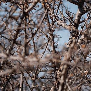 Winter in Klasserie