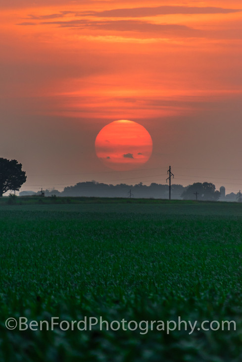 Smokey Sunrise Cornfield BenFordPhotogra