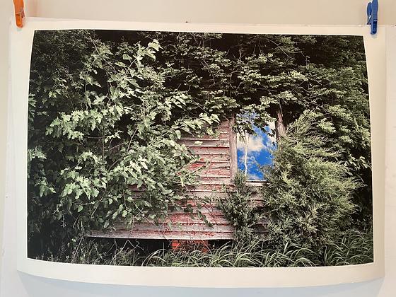 20x30 The Window