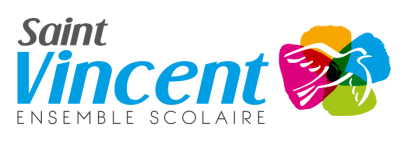 LogoStVincent-RVB-HORIZONTAL-e1499195708