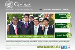 Cardigan Annual Report Site