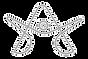 aoth-glyph-light.png
