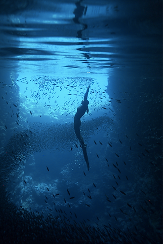 Free diving and snorkelling in Swallow's Cave