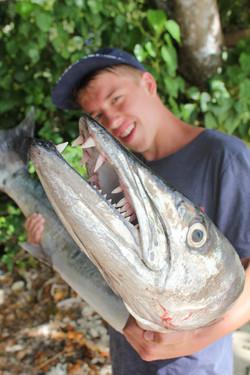 HUGE mackerel for dinner
