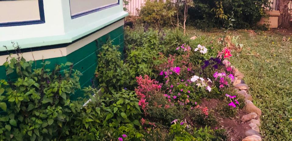 512 Walnut - Front Garden