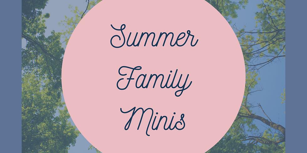 Summer Family Minis