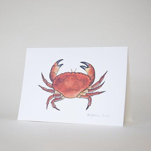 Hive Crab Card