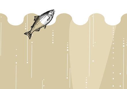 fish & Fizz fridayweb copy.jpg