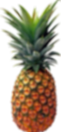 pineapple_PNG2756.png