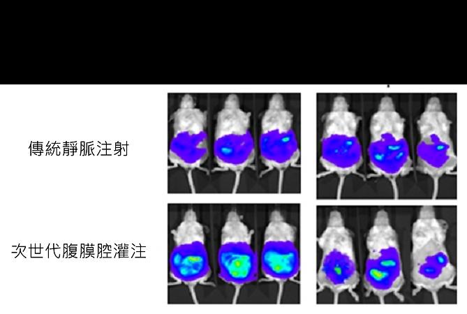 老鼠卵巢癌面積.png