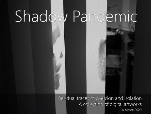 Shadow Pandemic 2020