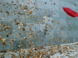 Did Volatility ETFs Drive the Market's Selloff?