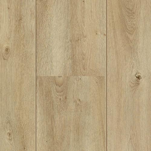 60106 Garda Oak