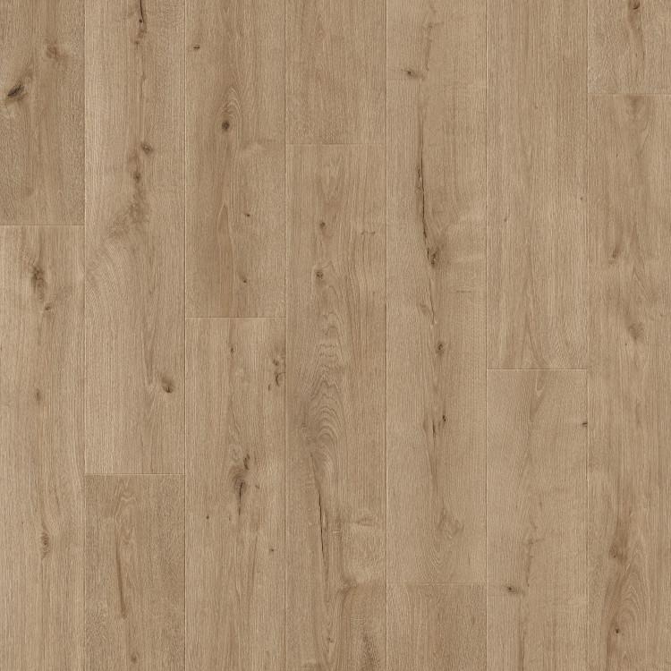 61005 Dune Oak