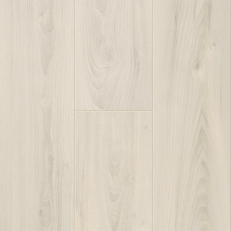 Magnolia Elm 60039