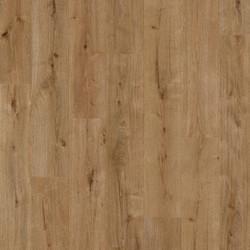 61006 Forest Oak