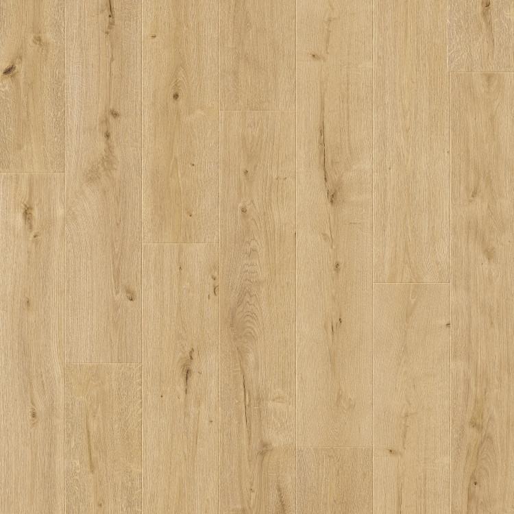 61004 Sonora Oak
