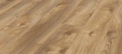 Macro Oak Nature D4794
