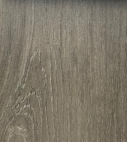 Stormy Oak