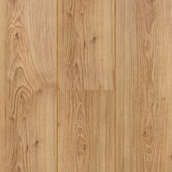 Butterscotch Elm 60755