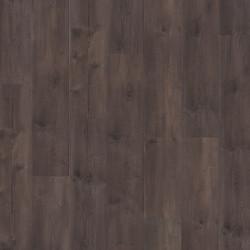 61013 Truffle Pine