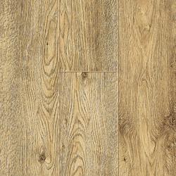 60139 Etna Oak