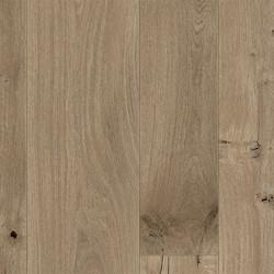 Seashell Oak 64083