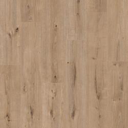 40184 Colored Oak
