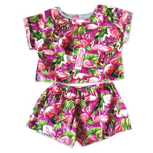 Retro Flamingo Print Raglan Tee and Basic Shorts Set