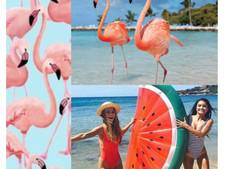 HAPPY FRIDAY! #flamingofriday