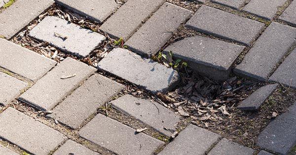 Repairing Damaged Pavers