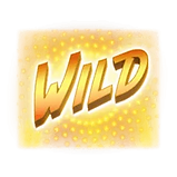 HipHopPanda_Wild.webp