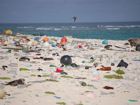 Microplastics: The Tiny Particles Plaguing Our Oceans