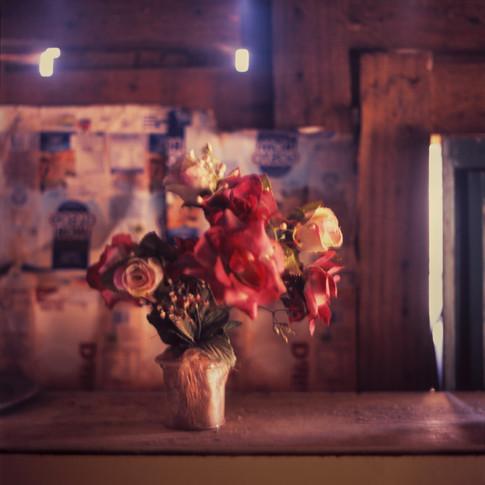 Vaso com vinte rosas 2012