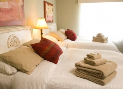 Soft Down Comforters